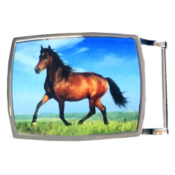 Z11968 Printed Sublimation Buckle