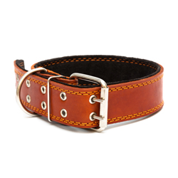 Dog collar 38 mm with double pinned buckle